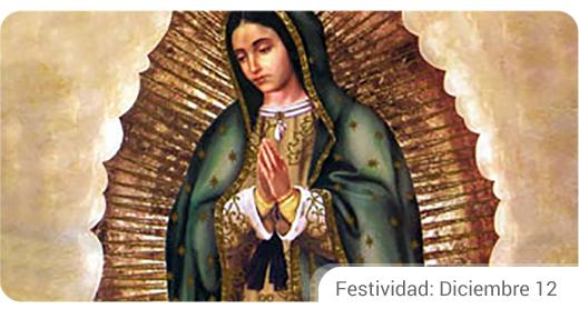 VirgendeGuadalupe.encuentra.com_.int_