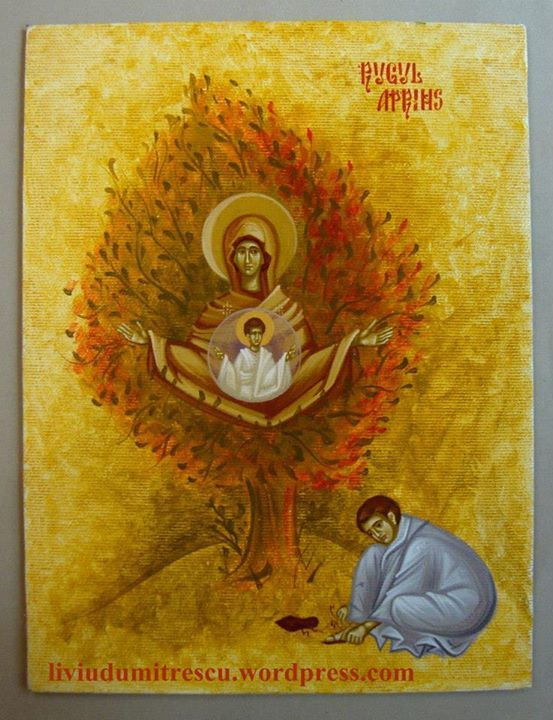 fr icona di maria del roveto ardente