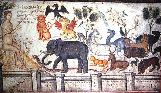 adam-nomme-les-animaux1622