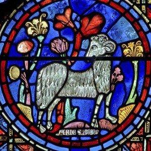 fr Vitrau Notre Dame de Paris